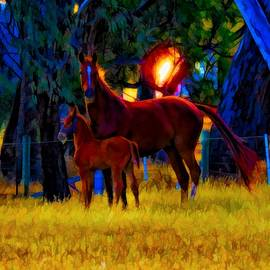 Paris And Foal At Sunset by Joan Stratton
