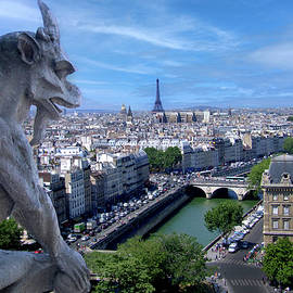 Paris, View from Notre Dame by Michael Chiabaudo