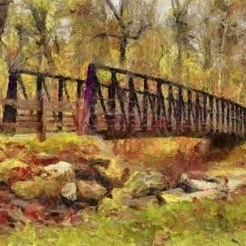 Park Walking Bridge by Reese Lewis