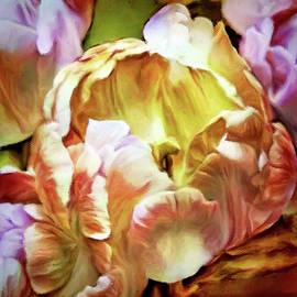 Parrot Tulips by Susan Maxwell Schmidt