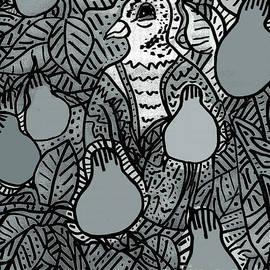 Partridge In A Pear Tree 1 by A Hillman