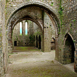 Eyes of the Past - Dunbrody Abbey, County Wexford, Ireland by Denise Strahm