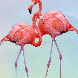Passionate About Flamingos by Diann Fisher