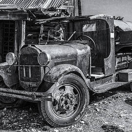 Past His Prime in Black and White by Andrew Wilson