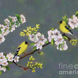Pastel Painting of American Goldfinches by Sandra Huston