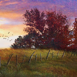 Pastoral Sunrise On Fenceline by R christopher Vest