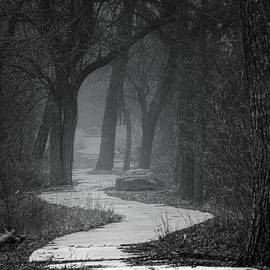 Path Into the Foggy Woods - Square by Patti Deters