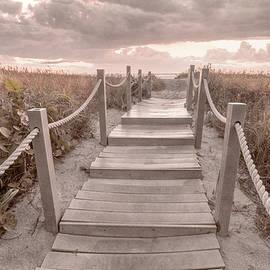 Path Through the Beachhouse Dunes by Debra and Dave Vanderlaan