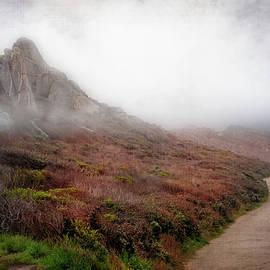 Path through the Mist by Terry Davis