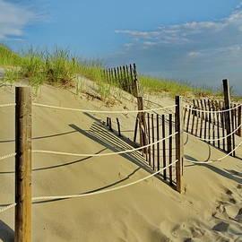 Path to Mayflower Beach, Dennis, Cape Cod, MA by Lyuba Filatova