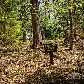 Path to the Ledges by Alana Ranney