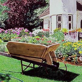 Patio Lane Garden by David Lloyd Glover