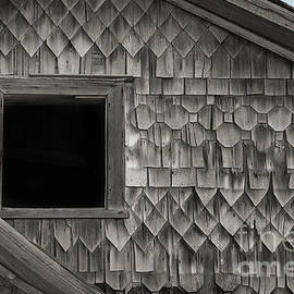 Patterns by Audie T Photography