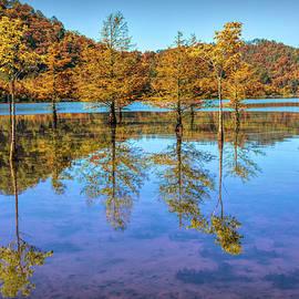 Peaceful Cypress Reflections by Debra and Dave Vanderlaan