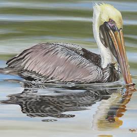Peaceful Pelican by Phyllis Beiser