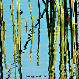 Peaceful Reflections by Bunny Clarke