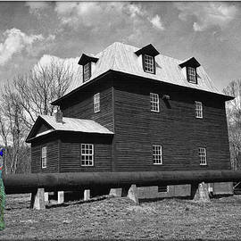 Peacock At The Mill In Selective Color by Constance Lowery