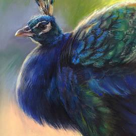 Peacock by Marjolein Kruijt