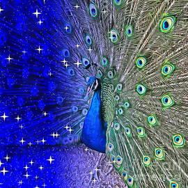 Peacock of The Night  by Yorgos Daskalakis