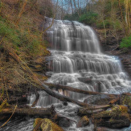 Pearsons Falls by Steve Rich
