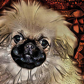 Pekingese Puppy - Abstract Background by Peggy Collins