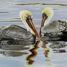 Pelican Pas De Deux by Phyllis Beiser