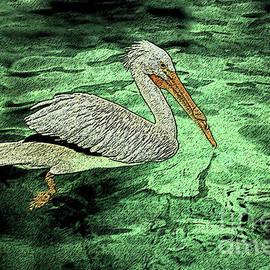 Pelicano  by Mary Mikawoz