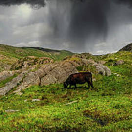 Pen Yr Ole Wen and Tryfan Mountain Snowdonia by Adrian Evans