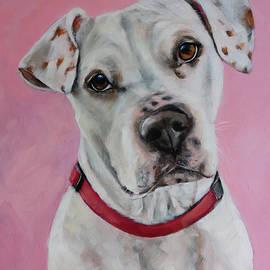 Penny by Julie Dalton Gourgues