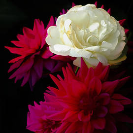 Peony and Dahlias by Mike Nellums