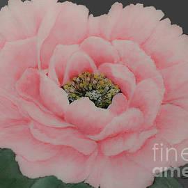 Perfectly Pink by Shirley Dutchkowski