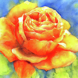 Perfume of a rose watercolor painting by Karen Kaspar