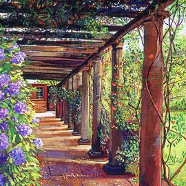 Pergola Walkway by David Lloyd Glover