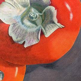 Persimmons by Colette Lee