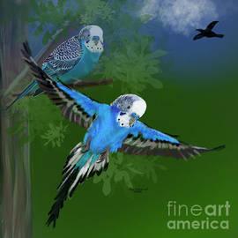Petey Parakeet Returns by Gary F Richards