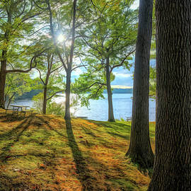 Picnic Area at Wingfoot Lake by Dennis Lundell