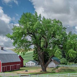 Picturesque Farm of The Palouse by Marcy Wielfaert
