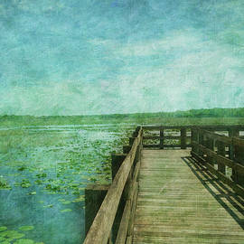 Pier Over Water Lilies by C Jensen