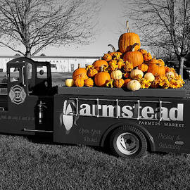 Pile of Pumpkins by Living Color Photography Lorraine Lynch