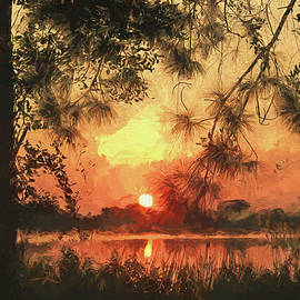 Pine Forest Sunset by HH Photography of Florida