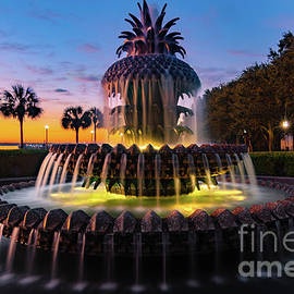 Pineapple Fountain at Sunrise by Norma Brandsberg