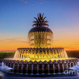Pineapple Fountain Glow by Inge Johnsson