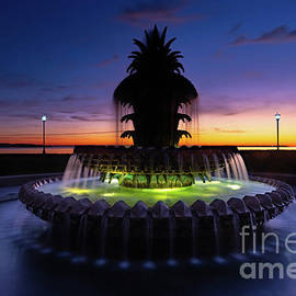 Pineapple Fountain Sunrise by Norma Brandsberg