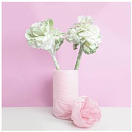 Pink and Cabbage by Martina Birnbaum