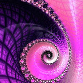 Pink and Purple Fractal Spiral Luxe and Glossy by Matthias Hauser