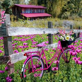 Pink Bicycle in the Poppies by Debra and Dave Vanderlaan