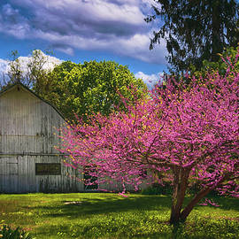 Pink Blossoms on the Farm by Joann Vitali