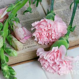 Pink Carnations on a Vintage Book by Taphath Foose