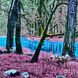 Pink Forest by Yorgos Daskalakis