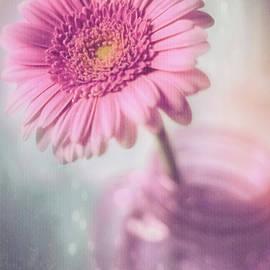 Pink Gerbera Daisy and Mason Jar Hint of Nostalgia by Carol Japp